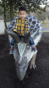 Picture of my son sitting on top of a Triceratops statue outside the Delaware Museum of Natural History.
