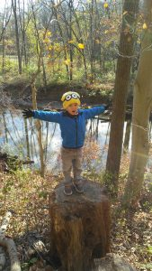 My son standing on a tree stump at White Clay Creek State Park.